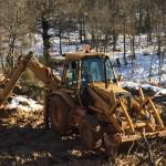 laboratoire d'apidologie en bois massif