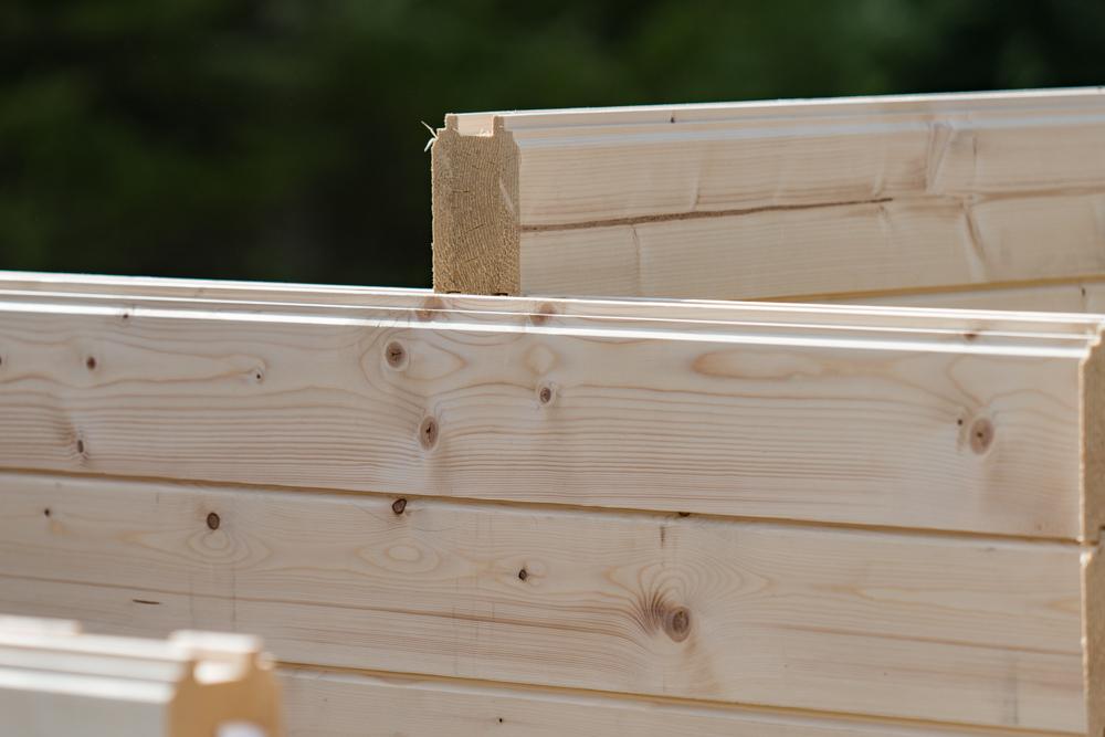 régulation des bactéries d'une maison bois
