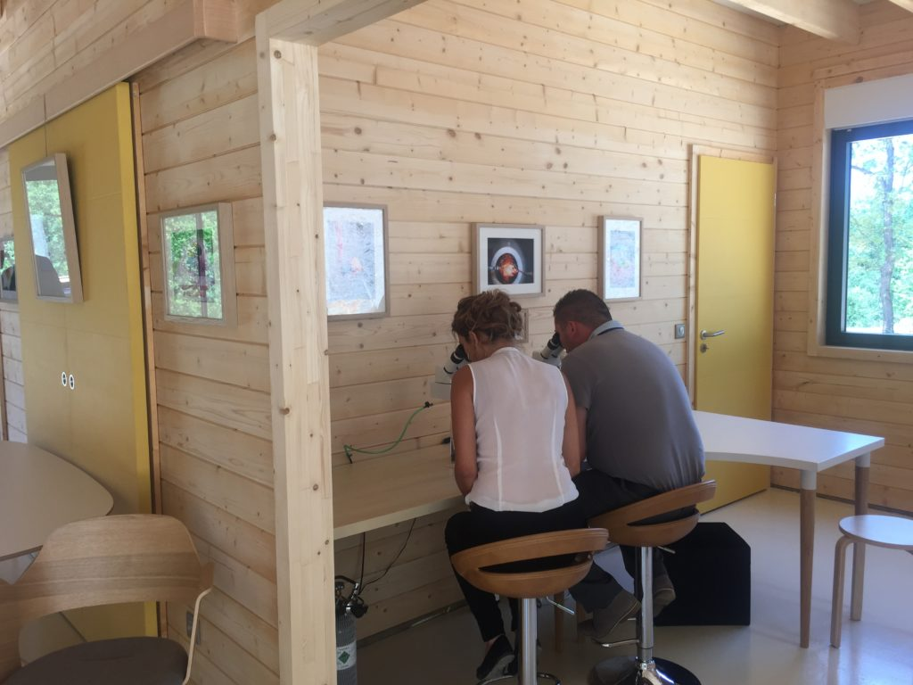 travailler dans un bâtiment construit en bois massif